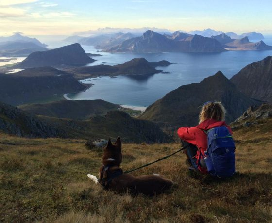panoramica Lofoten